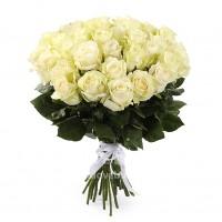 Роза импортная (белая)
